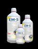 Bild von EM-5