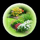 Bild für Kategorie Garten
