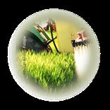 Bild für Kategorie Landwirtschaft