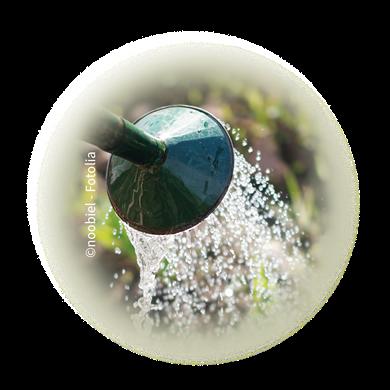 Bild für Kategorie Bewässerung