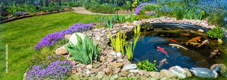 Teichpflege mit EM - Für klares Wasser und wenig Algen.