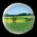 Bild für Kategorie Regenerative Landwirtschaft