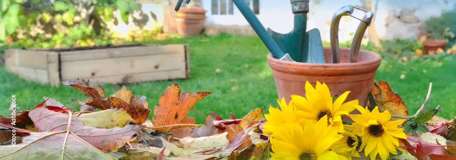 Gartenpflege mit EM® - im Herbst