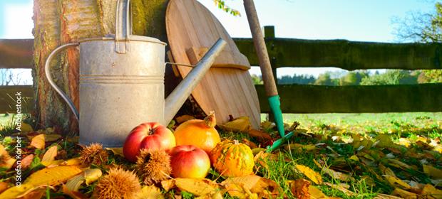Gartenpflege mit EM - im Herbst